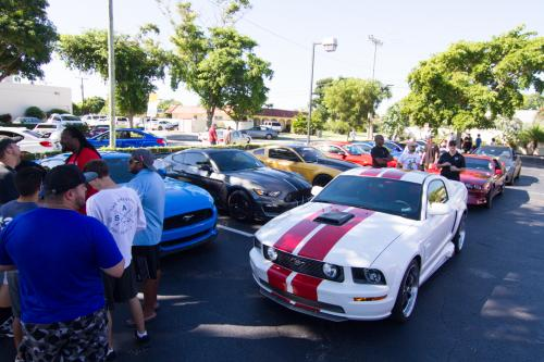 mustang car group boca raton